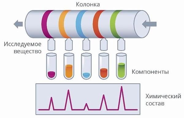 Газовая и жидкостная хроматография