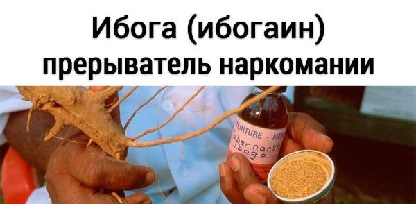 Почему анестезиологи обманывают пациентов, и вместо инициации Ибогой дают наркоз
