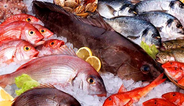 Польза рыбы для организма человека